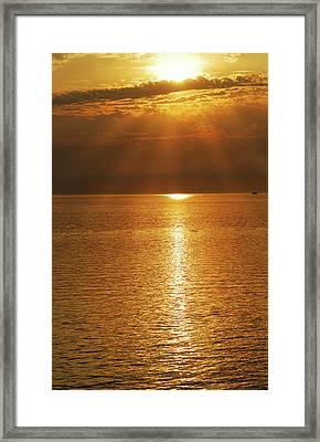 Pacfic Gold 8030 Framed Print