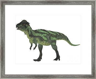 Pachycephalosaurus On White Framed Print by Corey Ford