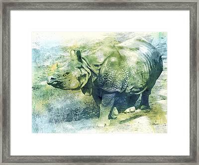 Pachyderm Framed Print