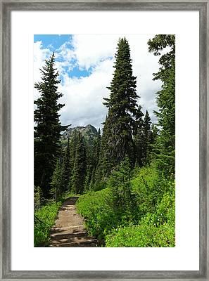 Pacific Crest Trail Towards American Ridge Framed Print