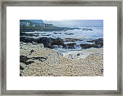 Framed Print featuring the photograph Pacific Gift by Dale Stillman