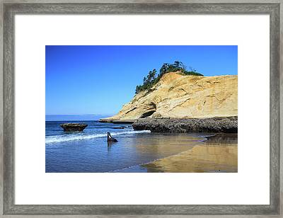 Framed Print featuring the photograph Pacific Morning by David Chandler