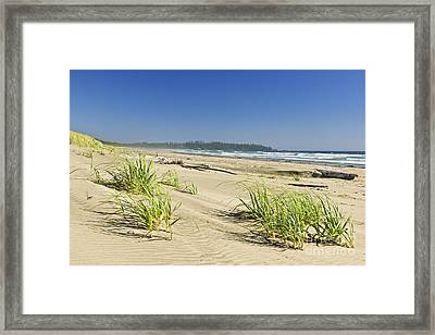 Pacific Ocean Shore On Vancouver Island Framed Print by Elena Elisseeva