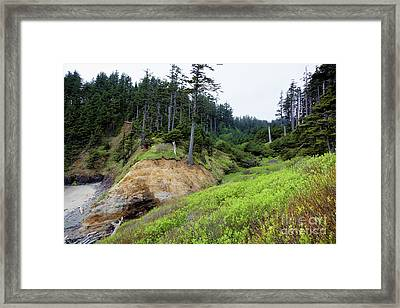 Pacific Overlook Framed Print
