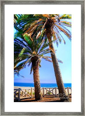 Pacific Palisades Park Framed Print by Kelly Wade