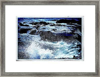 Pacific Palm Shadows Framed Print