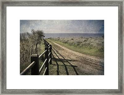 Pacific Path Framed Print by Kevin Bergen