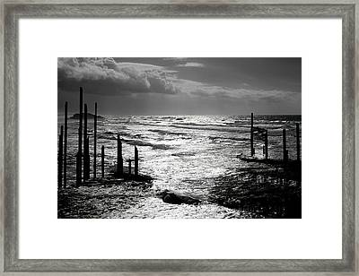 Pacific Silver Framed Print
