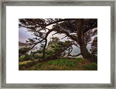 Pacific Textures Framed Print by Leland D Howard