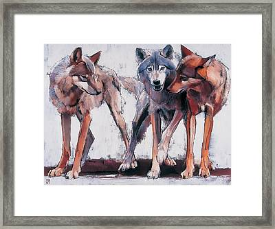 Pack Leaders Framed Print by Mark Adlington