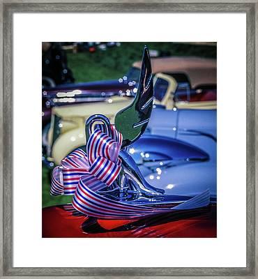 Packard Swan Framed Print