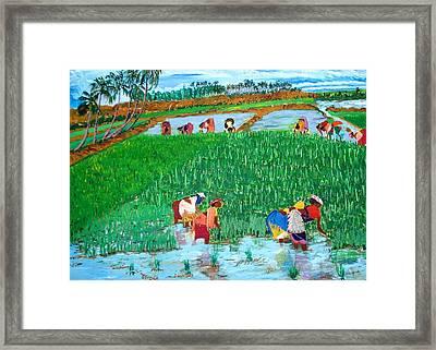 Paddy Planters Framed Print by Narayan Iyer