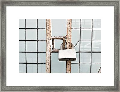 Padlocked Gate Framed Print by Tom Gowanlock