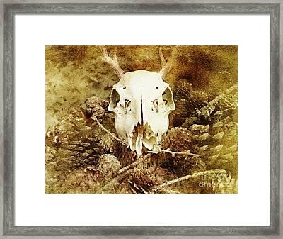 Pagan Memory Framed Print