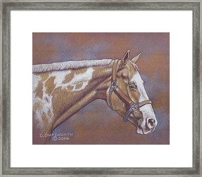 Paint Horse Framed Print by Dorothy Coatsworth