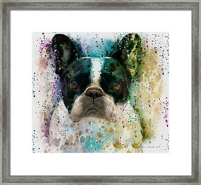 Paint It Frenchie Framed Print