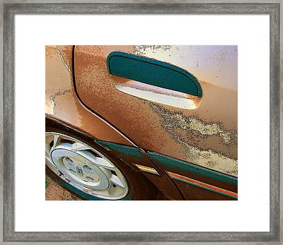 Paint Job Framed Print by Lenore Senior