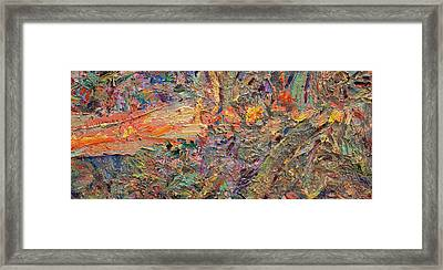 Paint Number 34 Framed Print by James W Johnson