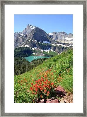 Paintbrush Above Grinnell Lake Framed Print