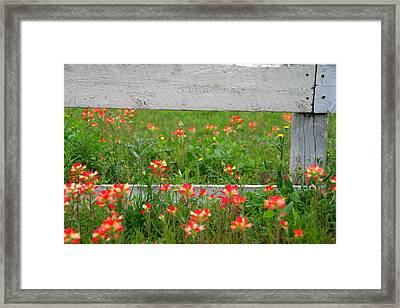 Paintbrushes And Fence Posts Framed Print