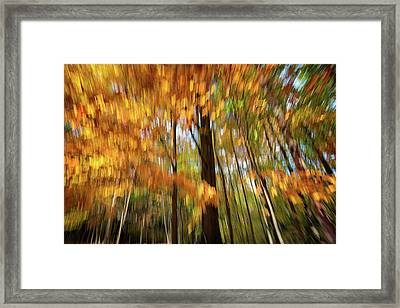 Painted Autumn Framed Print