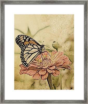 Painted Beauty Framed Print by Sally Engdahl