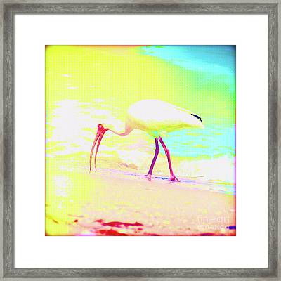 Painted Bird Breakfast Framed Print by Chris Andruskiewicz