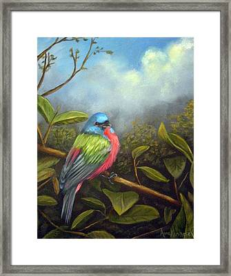 Painted Buenting Framed Print