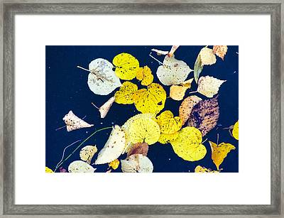 Painted By The Wind On Water Canvas Framed Print by Eusebiu Balauca