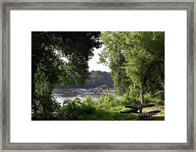 Painted Congaree Vista Framed Print