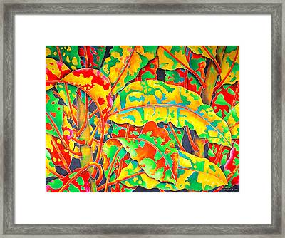 painted Crotons Framed Print by Daniel Jean-Baptiste