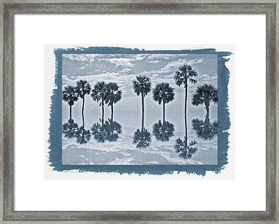 Painted Cyanotype Palm Tree Reflection Framed Print by Aimee L Maher Photography and Art Visit ALMGallerydotcom
