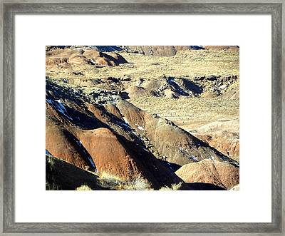 Painted Desert 11 Framed Print by Patricia Bigelow