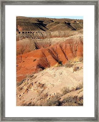Painted Desert 3 Framed Print by Patricia Bigelow
