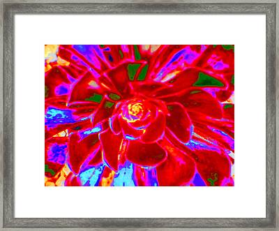 Carnival Colors Framed Print