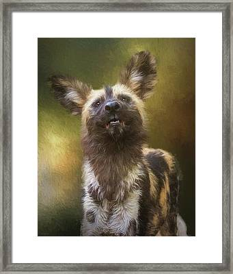 Painted Dog Portrait Framed Print