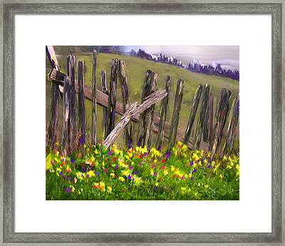 Painted Fence Framed Print by Vicki Tomatis
