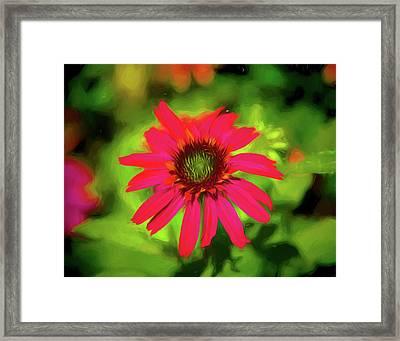 Painted Flower Framed Print