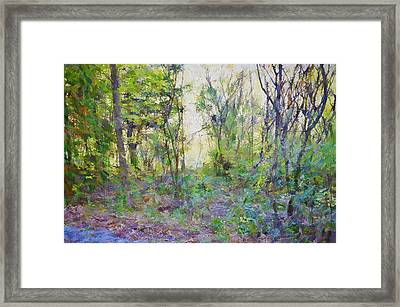 Painted Forrest Framed Print