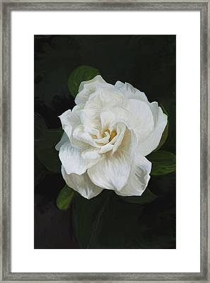 Framed Print featuring the photograph Painted Gardenia by Phyllis Denton
