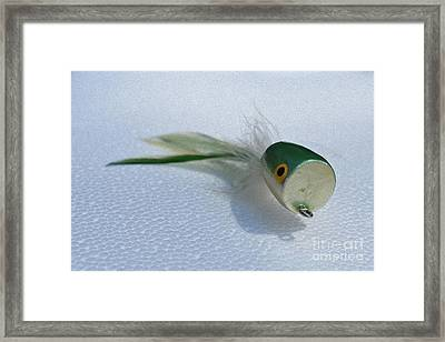 Painted Green Popper Framed Print