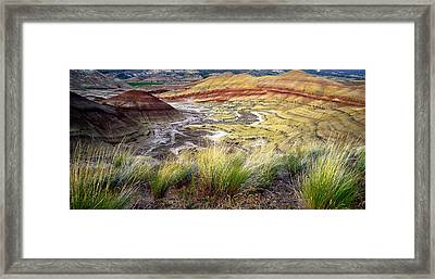 Painted Hills From Overlook Trail Framed Print by Adele Buttolph