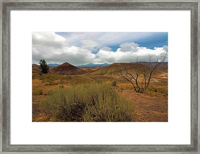 Painted Hills Landscape In Central Oregon Framed Print