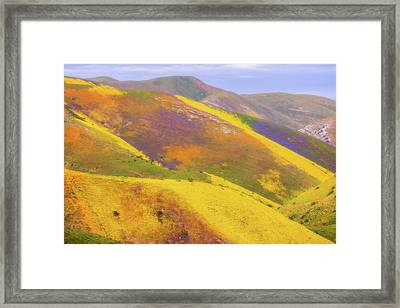 Framed Print featuring the photograph Painted Hills by Marc Crumpler