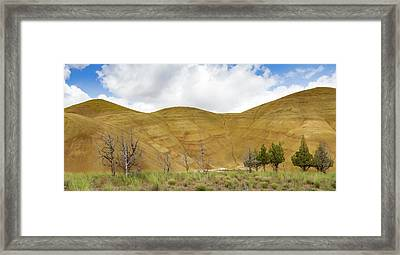 Painted Hills Panorama Framed Print by Jean Noren