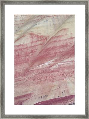 Painted Hills Textures 1 Framed Print by Leland D Howard