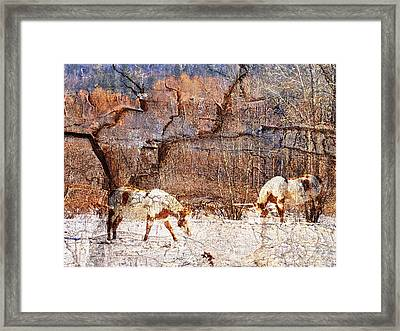 Painted Horses Framed Print