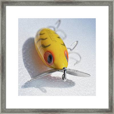 Painted Jitterbug Framed Print