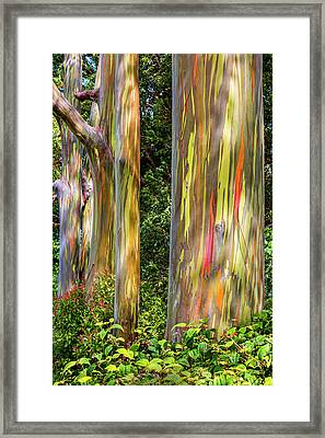 Painted Framed Print by Kelley King