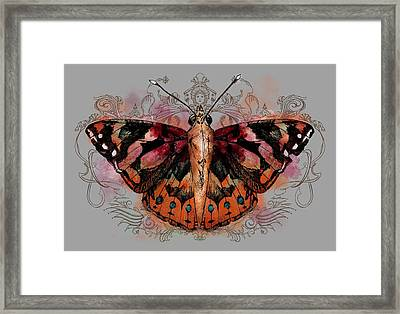 Painted Lady II Framed Print by April Moen